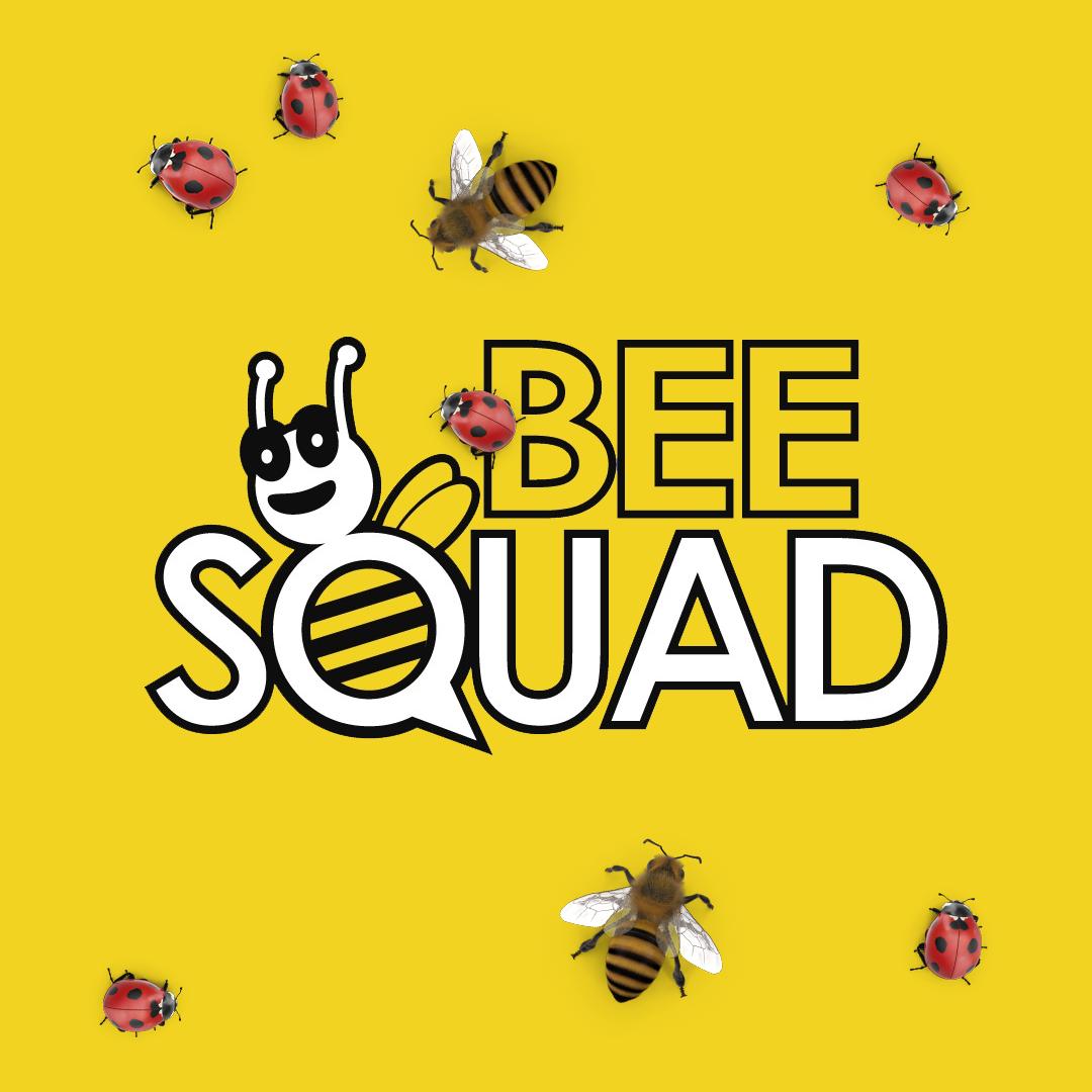 BEE SQUAD2